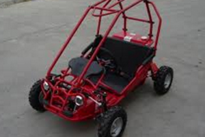 CPSC AND FF ANNOUNCE RECALL OF GO-KARTS