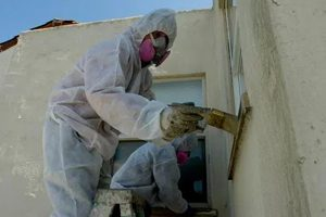 Lead Paint Manufacturers