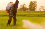 Pesticides exposure associated with parkinson's disease