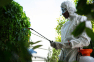 Pesticide Dieldrin Linked to Increased Risk of Parkinson's Disease