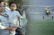 Research Documents Children's Exposure to Pesticides
