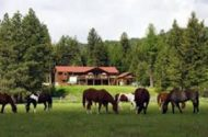 Unnamed ranch scoured for E. coli clues