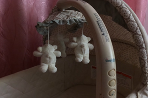 Loophole Made Simplicity Bassinet Recall Difficult