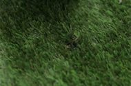 California AG Suing Artificial Turf Makers