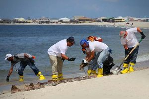 gulf Oil Spill Grows