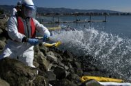 BP Told to Use Safer Chemicals on Deepwater Horizon Oil Spill