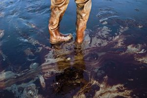 Bp Oil Spill Lawsuit