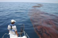 LSU Survey Chronicles BP Oil Spill Health Impacts in Louisiana