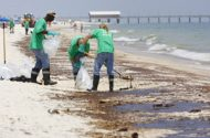 Survey Finds Gulf Oil Spill Taking Physical, Mental Toll on Adults and Children