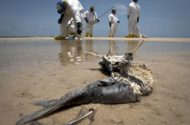 Panel Commissioners Fault BP Oil Spill Lack of Safety Culture