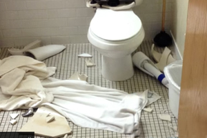 PW represents Florida Man in Class-Action Against Makers of Exploding Toilets