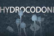 Hydrocodone Side Effects May Result In Medication Error Lawsuits