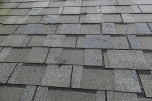 atlas chalet shingles