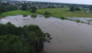 Food Crops Exposed to Flood Water