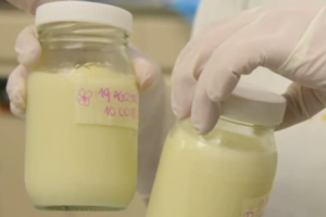 PFC, Linked to Cancer, Found in Breast Milk