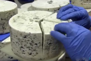 Gross Contamination in Cheese Linked to Illinois Food Poisoning
