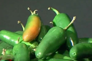 Herring Produce Recalls Peppers Over Possible Salmonella