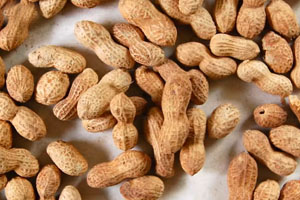 Peanut Salmonella Outbreak Could Continue for Years