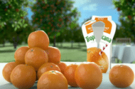 Tropicana Agrees to Refrain From Making Any Unsubstantiated Claims That Its Orange Juice Has Any Effect on the Risk of Heart Disease, Stroke, or Cancer