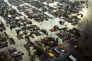Witness Says State Farm Didn't Thoroughly Investigate Katrina Claims