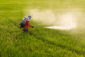 Roundup Litigation Cancer Warning