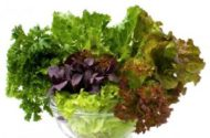 Food Poisoning From Lettuce, Spinach, Other Leafy Greens on the Rise