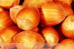 Hazelnuts Recalled