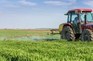 Tennessee Restricts Use of Monsanto's Weed Killer Dicamba