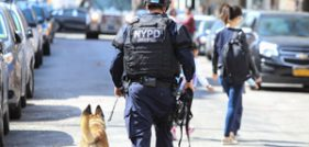 New Dorp Accident Injures One on Staten Island, New York