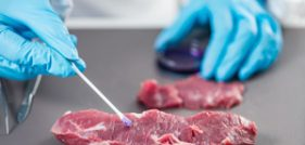 Salmonella Outbreak Leads to Beef Recall