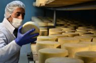 Fatal Accident Kills Man at New York Cheese Company