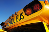 Driver Drove Onto Sidewalk To Get Past School Bus