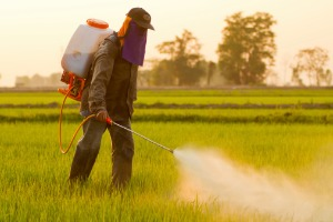 A worker spraying herbicide in a field. He is likely to be protected by the LA County Roundup Ban.