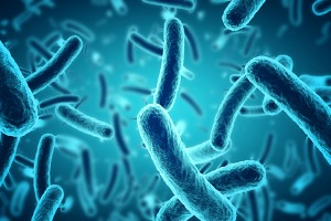 Recent study suggests c.difficile and ppis may be connected