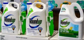 Roundup Linked to Liver Disease