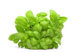 FDA Investigating Illnesses Tied to Basil from Mexico; Cases Documented in New York