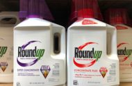 Jury Awards $2 Billion to Husband and Wife in Roundup Cancer Lawsuit