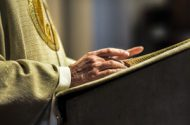Pope to Improve Transparency in Sex Abuse Cases