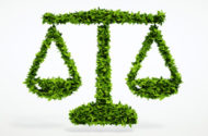 Environmental Law: An Introductory Guide