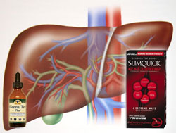 Case Study Links Green Tea Extract in SlimQuick to Liver Injury in 24-Year-Old Woman