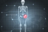 Two Years after DePuy Pinnacle Hip Implant Defense Verdict, Court Enters Judgment