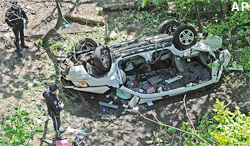 Deadly SUV Accident at Bronx Zoo Under Investigation