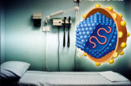 New Hampshire Hospital at Center of Hepatitis C Scare