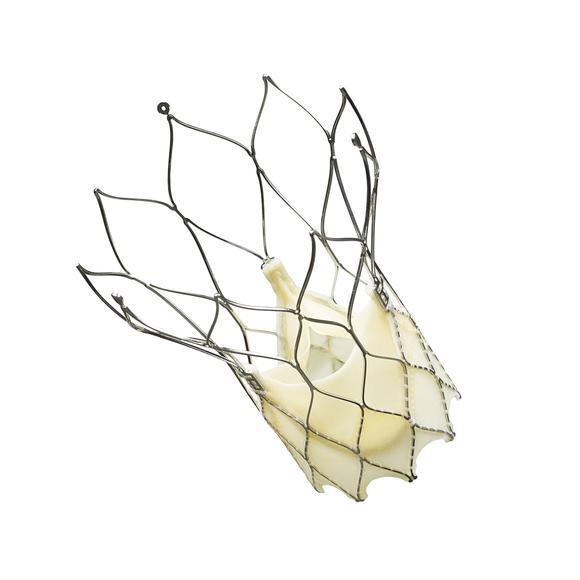 Portico-TAVR-Heart-Device-Implants-Halted