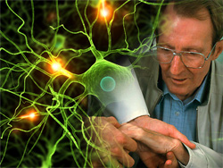 Study Links Roundup Herbicde Chemical to Parkinson's Disease