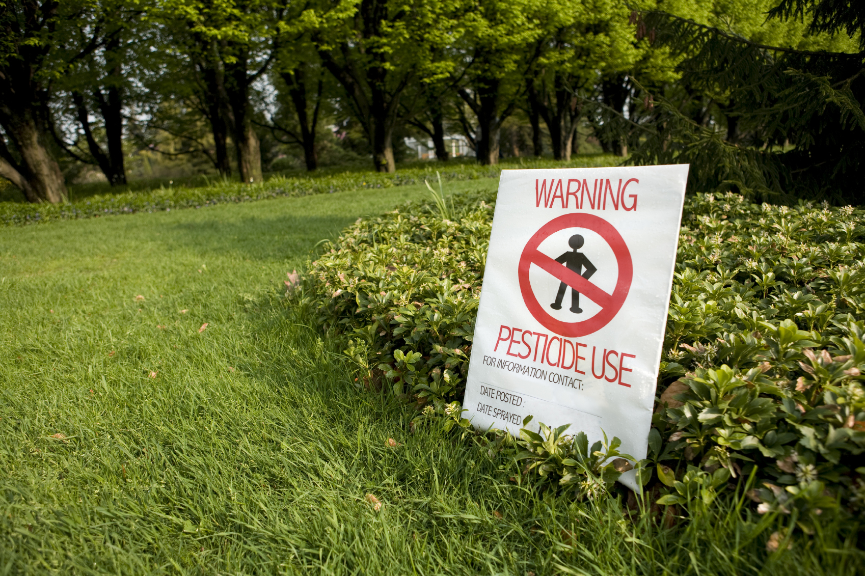 Pesticides Polluting Drinking Water