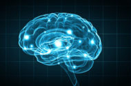 Deep Brain Stimulation Rechargers May Fail to Charge, Medtronic Warns