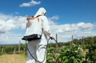 Monsanto's Roundup the Focus of Deep Controversy