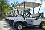 Garia Golf & Courtesy Electric Vehicles and Golf Cart Recalled