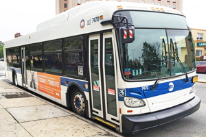 Head-on collision with an mta bus causes injuries in the bronx, new york (ny)